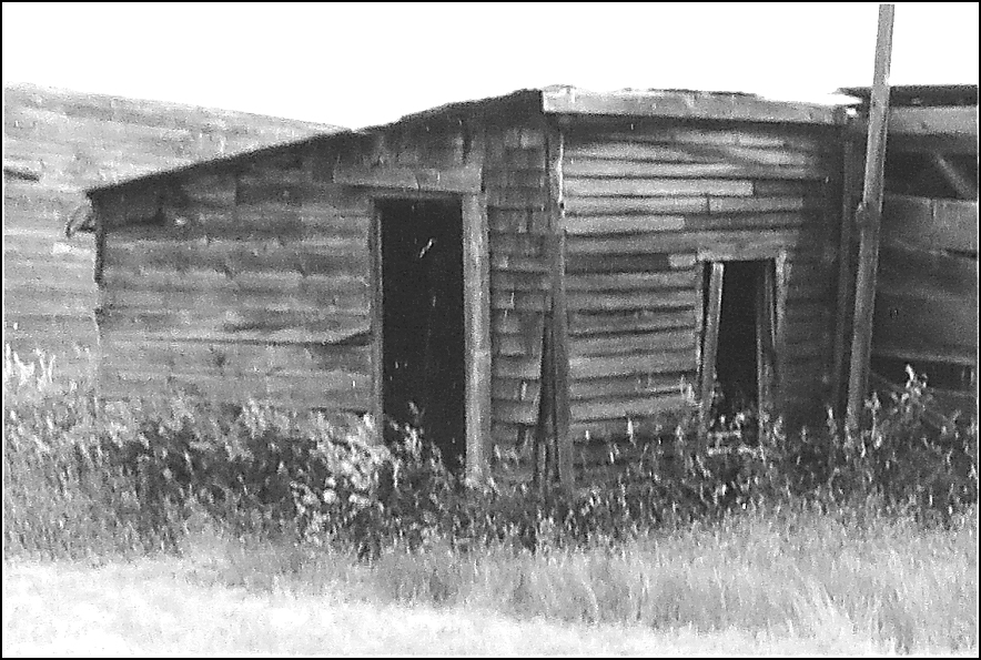 This is their shack.  The photo was taken about 1995.   (18 kb)