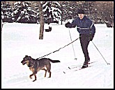 this guy is taking his dog