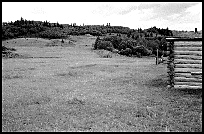 massacre site