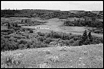 view of the 